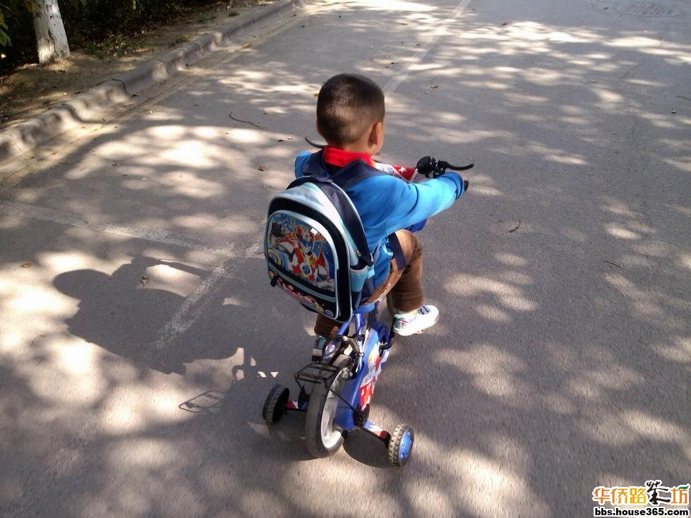 背着书包上学喽_亲子茶园