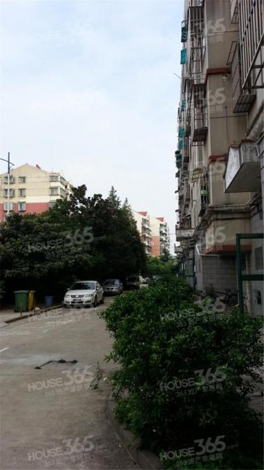 鸿达新寓3室1厅1卫72平米简装产权房2001年建