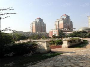 枫叶新都市实景图