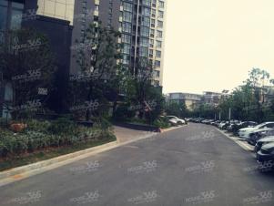 将军大道 佛城西路 天泰青城苑 精装单身公寓 家电齐全 环