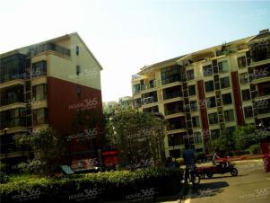 南湖春城3室2厅2卫171.05平方产权房精装
