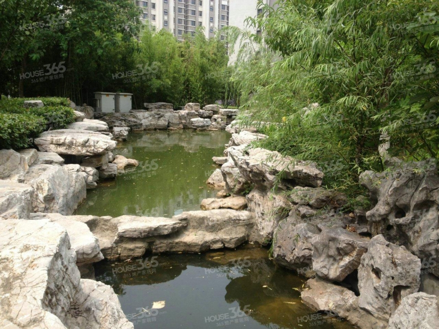 奥体新城海棠园 豪华装修 景观阳台 楼王位置