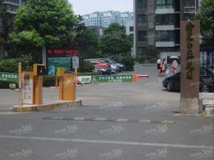 鑫苑望江花园,合肥鑫苑望江花园二手房租房