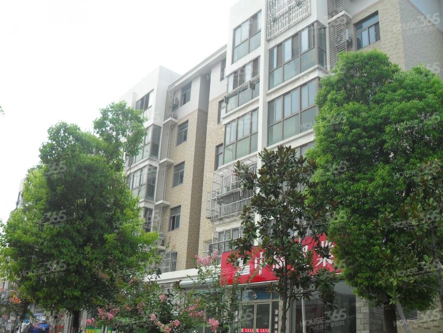博学苑4室2厅2卫168平米简装产权房2011年建