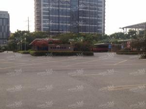 新出 金奥大厦底层纯门面 门宽10米 纵宽12米 招知名品牌餐饮