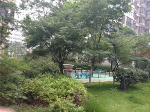 阳湖名城实景图