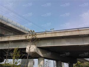 保利公园九里实景图