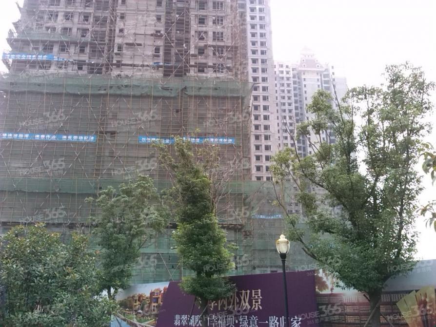 原树提香,地铁口+全天采光+毛坯四房+精选楼层,随时看房急售