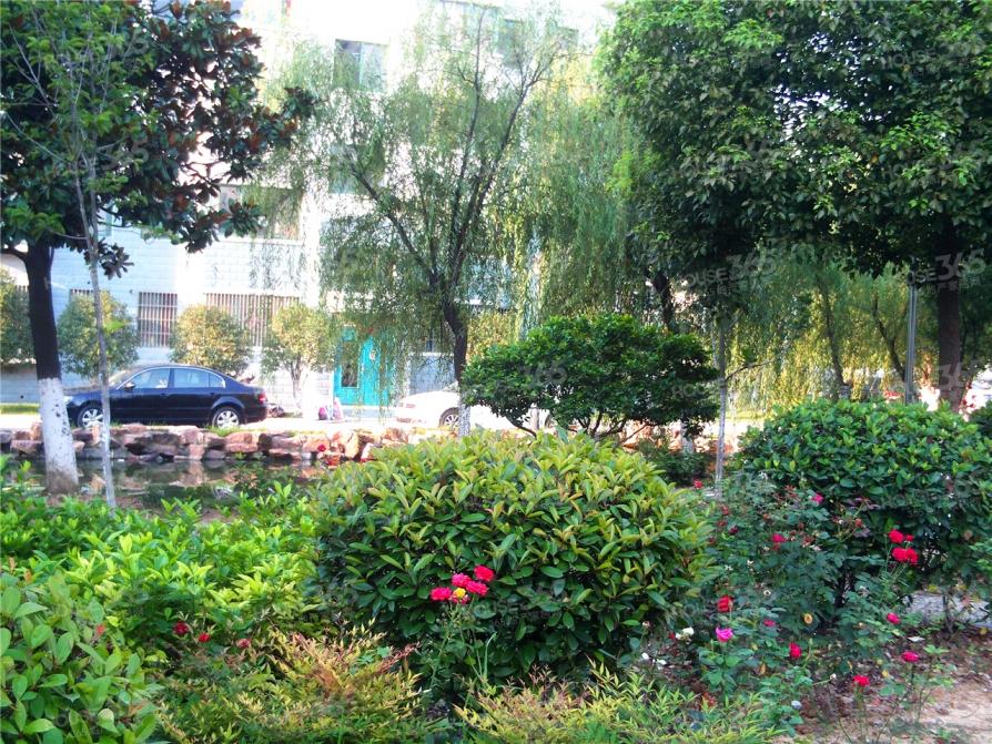 翡翠花园,三号线地铁房,绝版多层南北通透三房,低价无税出售