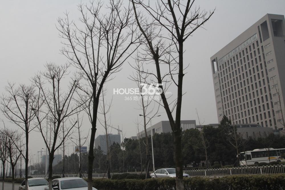 河海大学/图片信息天泰青城附近的河海大学(1.10)查看原图
