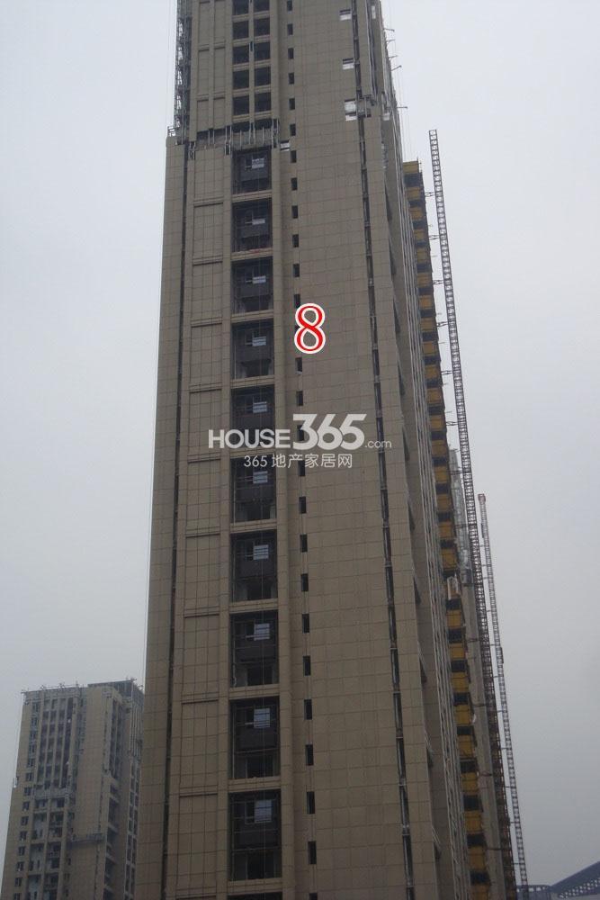 杭州新房 滨江区 天阳半岛国际 (住宅)