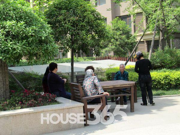 广场旁边的树荫地有老人坐着聊天